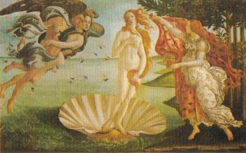 ヴィーナスの誕生